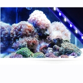 Underwater 24 LED 5W Aquarium Fish Tank Garden Pool Light Suction Stick Strip Bar Colorful Lamp