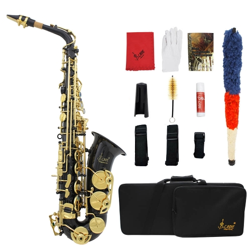 Buy LADE Brass Engraved Eb E-Flat Alto Saxophone Sax Abalone Shell Buttons Wind Instrument Case Gloves Cleaning Cloth Grease Belt Brush
