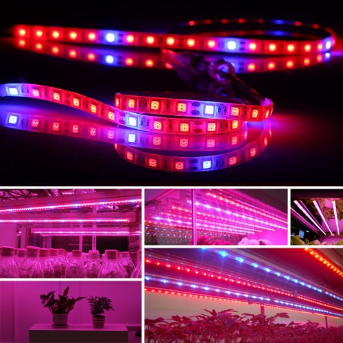0.5M 3PCS LED Plant Growth Strip Light AC100-240V SMD5050 Red Blue Growing Lamp IP 65 Waterproof for Herbs Flowers Vegetables Fruits Succulents Bonsai Horticulture GreenhouseLED Strips<br>0.5M 3PCS LED Plant Growth Strip Light AC100-240V SMD5050 Red Blue Growing Lamp IP 65 Waterproof for Herbs Flowers Vegetables Fruits Succulents Bonsai Horticulture Greenhouse<br><br>Blade Length: 19.5cm