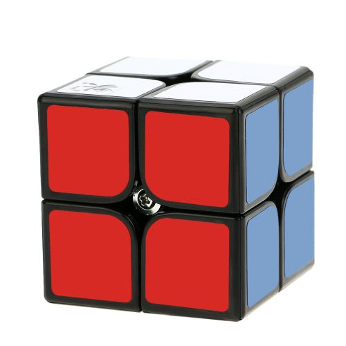Dayan Zhanchi 2 * 2 Magic Cube