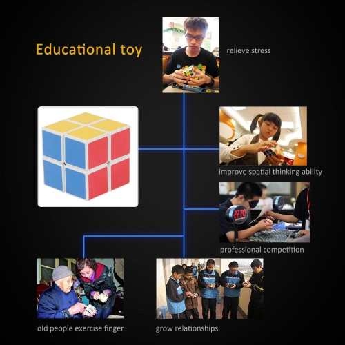 Professional Shengshou 2 * 2 Magic Cube