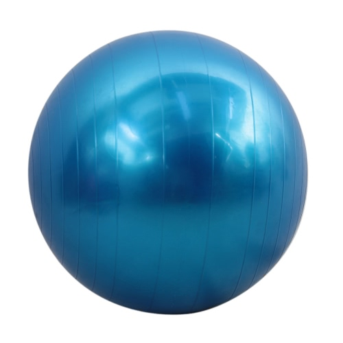 Buy 65cm Fitness Exercise Gym Fit Yoga Core Ball Multi-use Indoor Training