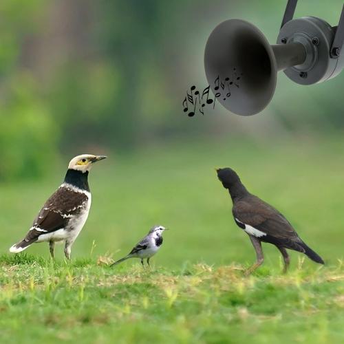 Outdoor Hunting Decoy Bird Caller Mp3 Bird Sound with Loudspeaker 35W Amplifier 125dBHunting Tools<br>Outdoor Hunting Decoy Bird Caller Mp3 Bird Sound with Loudspeaker 35W Amplifier 125dB<br><br>Blade Length: 14.0cm