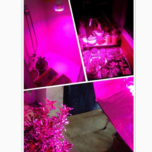 E27 7W planta cultivo hidropônico lâmpada lâmpada LED 6 economia de energia azul vermelho 1 para interior flor plantas de crescimento vegetal com efeito de estufa 85-265V от tomtop.com INT