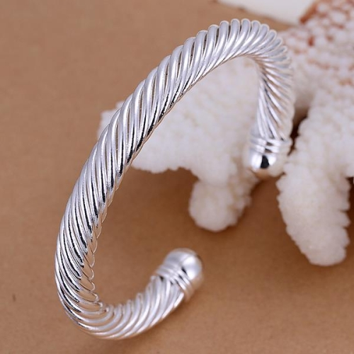 Fashion Classic Silver-Plated Twist Rope Chain Bangle