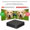 MXQ PLUS Smart Android TV Box Android 5.1.1 S905 Quad-Core de 1G / 8G KODI XBMC UHD 4K 3D Mini PC WiFi H.265 DLNA Airplay Miracast HD Media Player